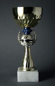789161_trophy